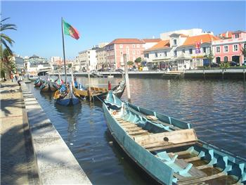 Moliceiro tours in the Ria de Aveiro